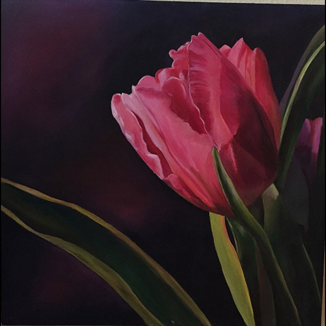 'Red Tulip' by  Linda Ziglar - Oil 24x24