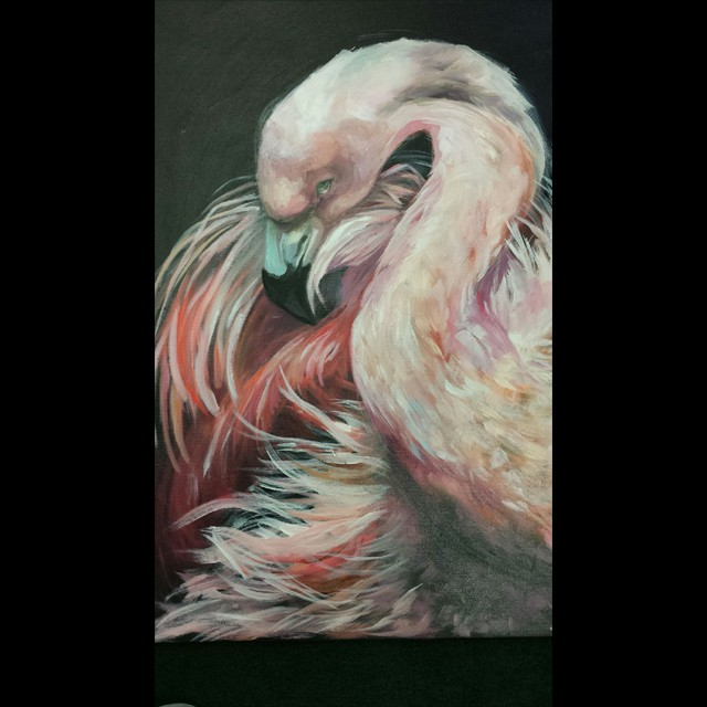 'Flamingo' by PJ Svejda - Oil  20x16