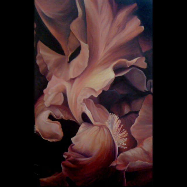 'Folded Flower' by PJ Svejda - Oil  48x36