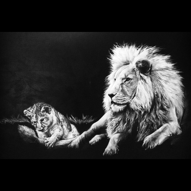 'Lions' by PJ Svejda - Oil 36x48