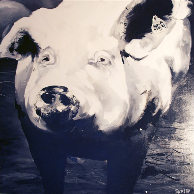 'Pig' by PJ Svejda - Acrylic & Oil 48x48