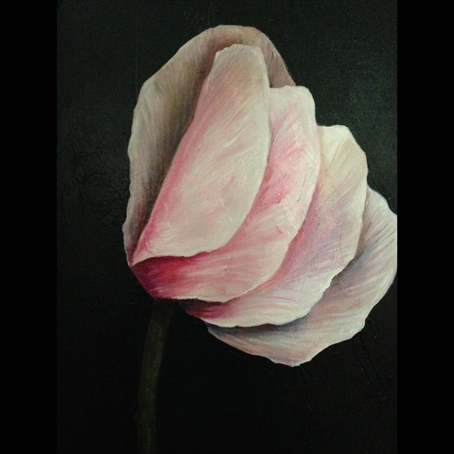 'Pink Petals' by PJ Svejda - Oil 20x16
